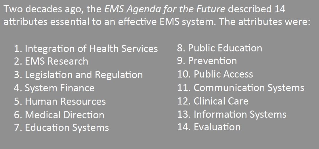 EMS Agenda for the Future